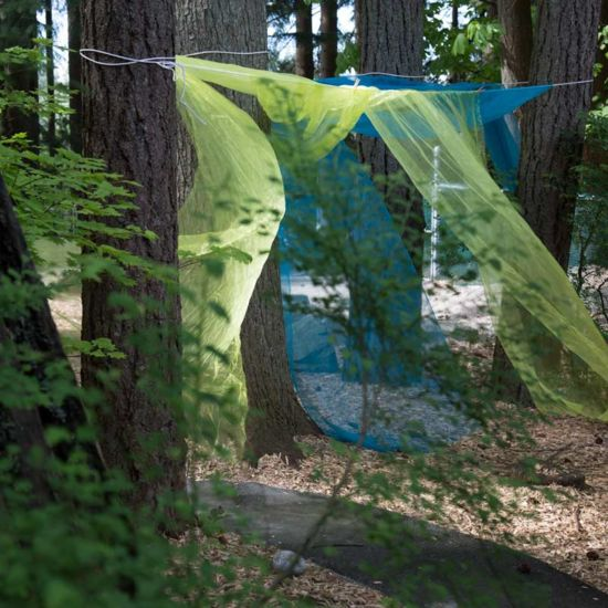translucent blue and yellow-green fabric hung within the trees